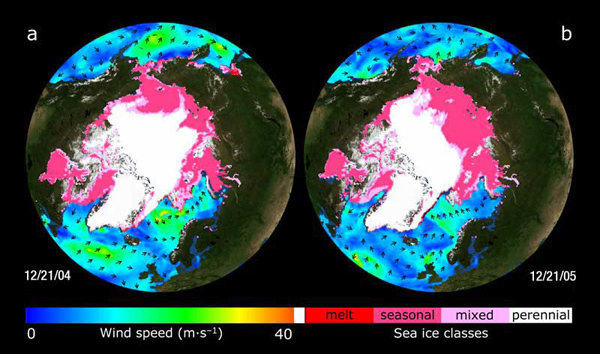 QuikScat Arctic observations