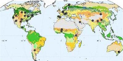 SMAP soil moisture measurements