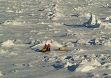 Image of Antarctic sea ice in the Bellingshausen Sea in Oct. 2007
